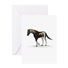 Horse (Paint) Greeting Card