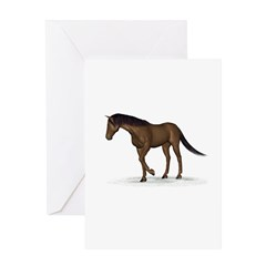Horse (Liver Chestnut) Greeting Card