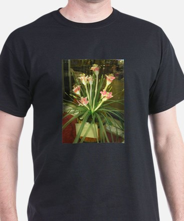 naturally lit T-Shirt