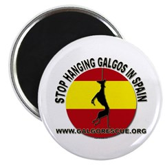 stop_hanging_galgorescue Magnets