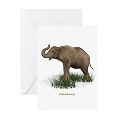 Elephant (Baby) Greeting Card