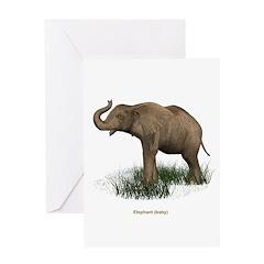 Elephant (Baby) Greeting Card