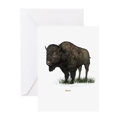 Bison (Buffalo) Greeting Card