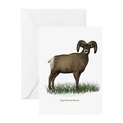 Big Horned Sheep Greeting Card