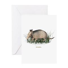 Armadillo Greeting Card