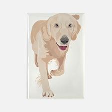 Cute Anatolian shepherd dog Rectangle Magnet
