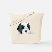 Cute Bolognese Tote Bag