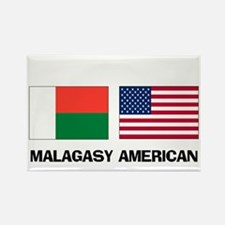 Malagasy American Magnets