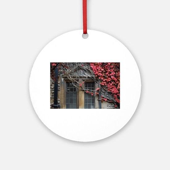 Red creeper Round Ornament