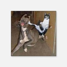 Funny Kung Fu Kitty Sticker