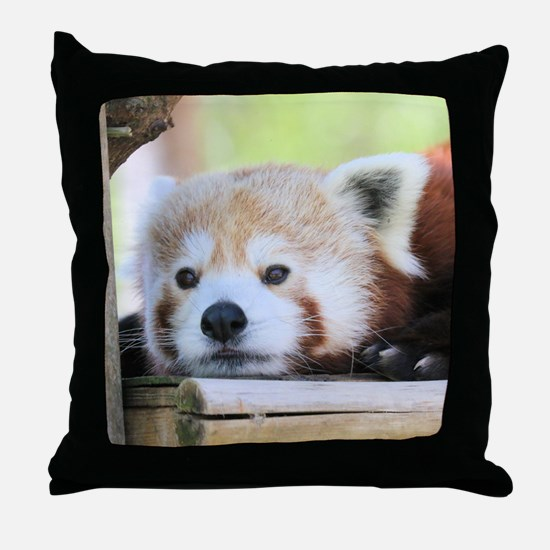 Funny Red panda Throw Pillow