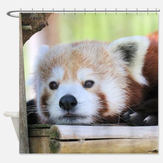 Unique Red panda Shower Curtain