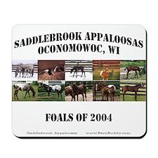 2004 Foals Mousepad