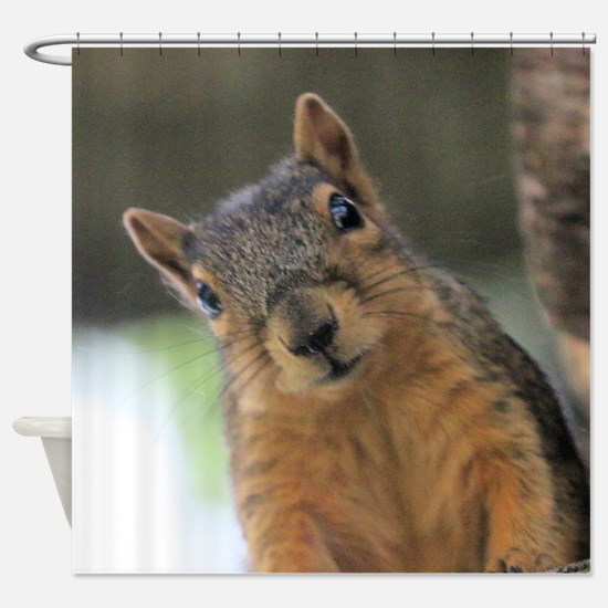 Unique Squirrel Shower Curtain