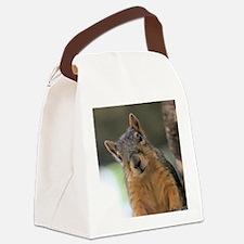 Unique Squirrel Canvas Lunch Bag