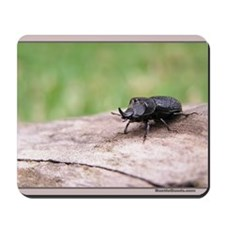 Rugose Stag Beetle Mousepad