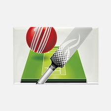 Cricket pitch bat ball Magnets