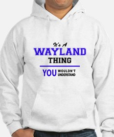It's WAYLAND thing, you wouldn't Hoodie