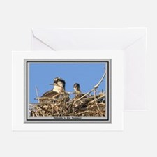 Osprey Nest Note Cards (Pk of 10) Greeting Cards