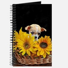 Chihuahua in sunflowers Journal