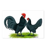Blue Dutch Chickens Postcards (Package of 8)
