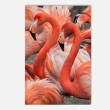 Cute Flamingo painting Postcards (Package of 8)