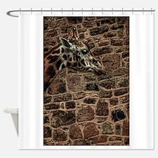 Amazing Optical Illusion Of A Giraf Shower Curtain