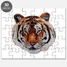 STARE Puzzle
