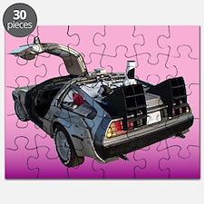 Delorean Puzzle