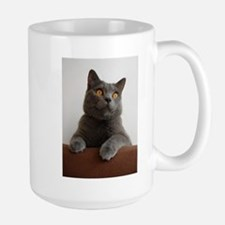 chartreux peeking Mugs
