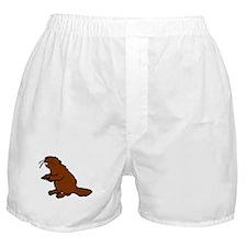 Brown Beaver Boxer Shorts