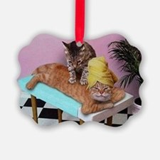 Funny Cat Massage Ornament