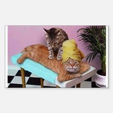 Funny Cat Massage Decal