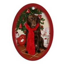 Rolo Custom Christmas Ornament