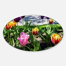 Tulips Decal