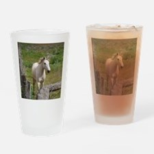 Unique Brumby Drinking Glass
