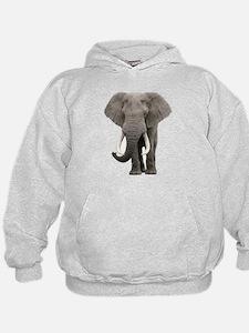 Realistic elephant design Hoodie