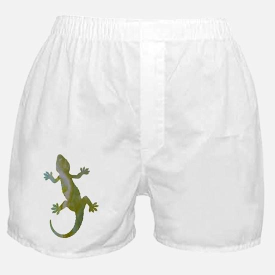 Cute Gecko lover Boxer Shorts