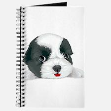 Bolognese dog Journal