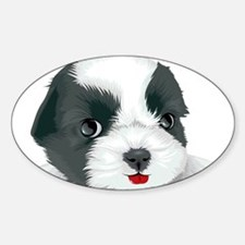 Bolognese dog Decal