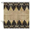 Black and gold Lace on grungy old p Shower Curtain