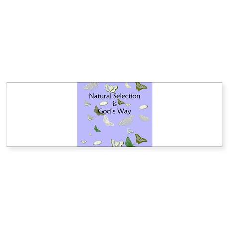 Natural Selection Bumper Sticker