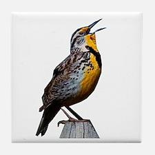 Western Meadowlark Tile Coaster