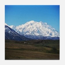 Cute Mount mckinley Tile Coaster