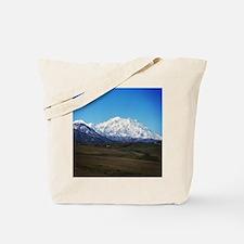 Cute Blue springs Tote Bag