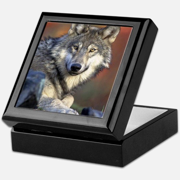 Cute Wolf girl Keepsake Box