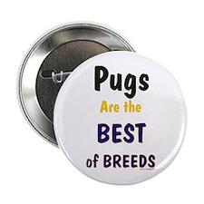 Pug Dog Best Of Breeds Button