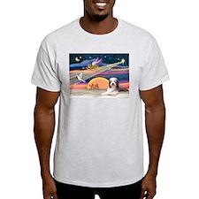 Xmas Star & Beardie T-Shirt