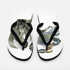 Sage Callinectes Flip Flops