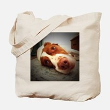 Cute Brittany spaniel Tote Bag
